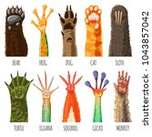 animal paw vector animalistic... | Shutterstock .eps vector #1043857042
