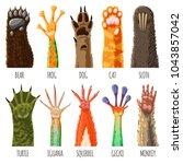 animal paw vector animalistic... | Shutterstock .eps vector #1043857042