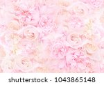 Stock photo summer blossoming delicate roses on blooming flowers festive background pastel and soft bouquet 1043865148