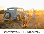a car at sunset with a goat in... | Shutterstock . vector #1043868982