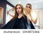 hairdresser and customer... | Shutterstock . vector #1043872366