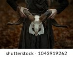 witch in a long black dress | Shutterstock . vector #1043919262