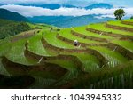 terraced rice field in... | Shutterstock . vector #1043945332