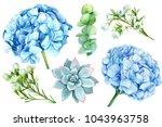 Set Of Blue Flowers  Hydrangeas ...