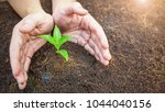 two hands holding a young green ... | Shutterstock . vector #1044040156