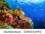 underwater life landscape | Shutterstock . vector #1044142492