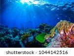 underwater world landscape | Shutterstock . vector #1044142516
