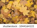 background group autumn orange...   Shutterstock . vector #1044164122