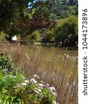 Small photo of Ambience at the banks of the Mira in Odemira - Alentejo