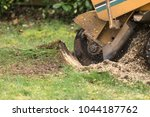 Small photo of Stump grinder in action
