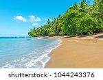 tropical beach along the... | Shutterstock . vector #1044243376