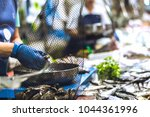 fish market workers | Shutterstock . vector #1044361996