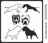 agility,american,amstaff,animal,ban-dog,bull,dog,drawing,head,illustration,nice,pet,pit,pitbull,playful