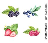 hand drawn set of strawberry ... | Shutterstock . vector #1044686308