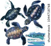 Sea Turtle Hand Drawn...