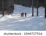 city of zavodoukovsk  tyumen... | Shutterstock . vector #1044727516