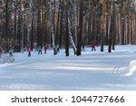 city of zavodoukovsk  tyumen... | Shutterstock . vector #1044727666