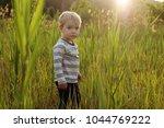 portrait of a pretty little 3... | Shutterstock . vector #1044769222