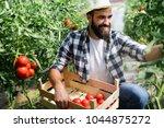 attractive happy male farmer... | Shutterstock . vector #1044875272
