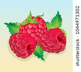 raspberry illustration vector   Shutterstock .eps vector #1044971302