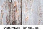 the old gray door with a lock. | Shutterstock . vector #1045062508