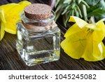 a bottle of evening primrose... | Shutterstock . vector #1045245082