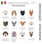 dogs by country of origin.... | Shutterstock .eps vector #1045261666