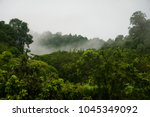 wet and foggy jungle of malaysia | Shutterstock . vector #1045349092