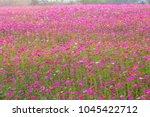 soft focus amazing scenery of...   Shutterstock . vector #1045422712
