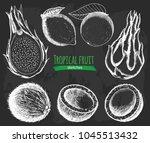 exotic tropical fruit sketch... | Shutterstock .eps vector #1045513432