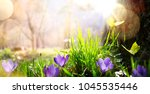 abstract nature spring... | Shutterstock . vector #1045535446