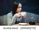 flu cold or allergy symptom... | Shutterstock . vector #1045602742
