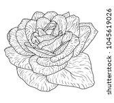 beautiful monochrome sketch ... | Shutterstock .eps vector #1045619026