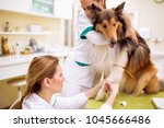 taking a sample of blood from... | Shutterstock . vector #1045666486