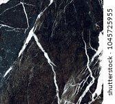 black vein marble background. ... | Shutterstock . vector #1045725955