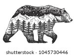 Vector Double exposure, Hand drawn bear for your design, wildlife concept | Shutterstock vector #1045730446