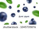 background of the blueberries... | Shutterstock .eps vector #1045735876