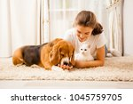 Stock photo the girl is relaxing with her pets 1045759705
