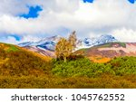mountain autumn tree landscape | Shutterstock . vector #1045762552