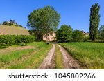 narrow rural road between green ... | Shutterstock . vector #1045802266