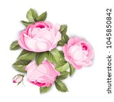 the blooming rose with couple... | Shutterstock .eps vector #1045850842