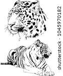 vector drawings sketches... | Shutterstock .eps vector #1045970182