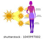 definition of sun protection... | Shutterstock .eps vector #1045997002