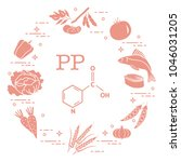 foods rich in vitamin pp. beans ...   Shutterstock .eps vector #1046031205