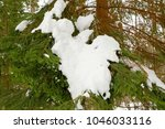 winter landscape with pine... | Shutterstock . vector #1046033116