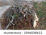 stacked yard debris  sticks ... | Shutterstock . vector #1046038612