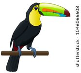 cute bird toucan. cartoon... | Shutterstock . vector #1046066608