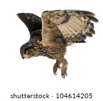 Stock photo eurasian eagle owl bubo bubo years old flying against white background 104614205