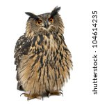 Stock photo eurasian eagle owl bubo bubo years old standing against white background 104614235