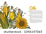 illustration with a set of the... | Shutterstock .eps vector #1046147065